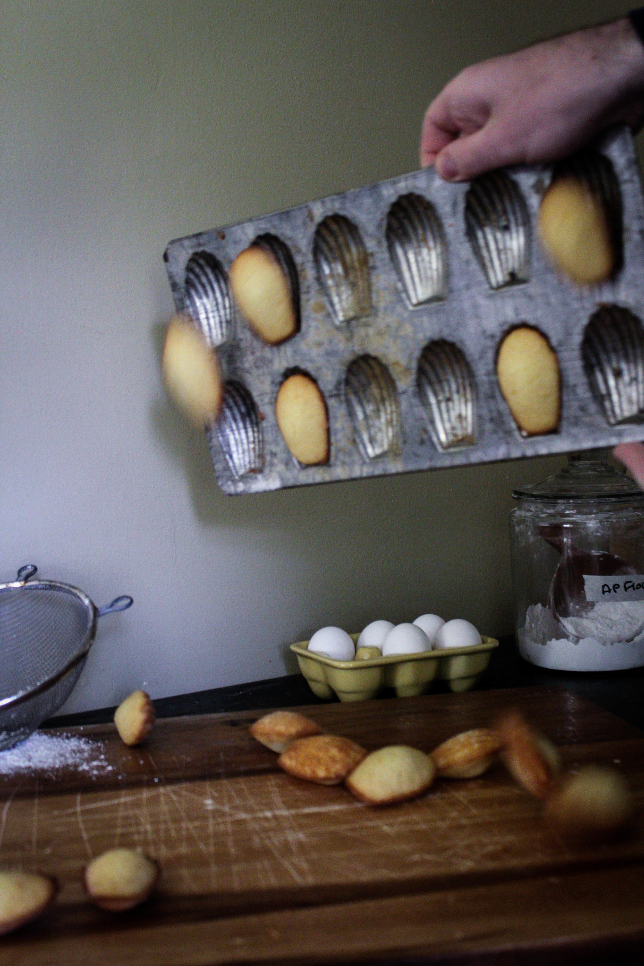 Honey Madeleines from Ruby Tandoh-6.jpg