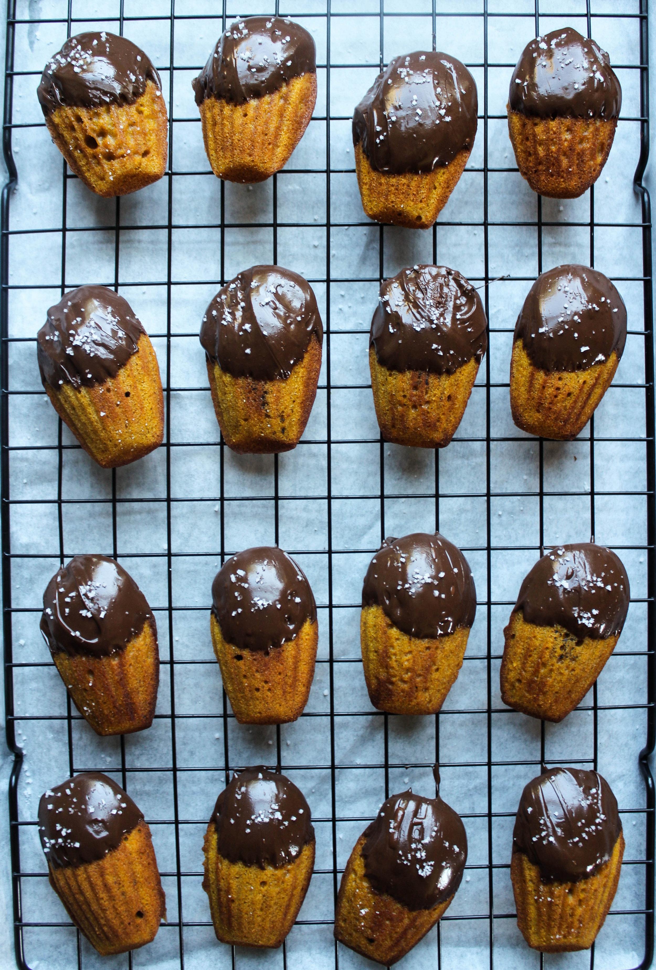 Pumpkin Madeleines with Dark Chocolate and Sea Salt