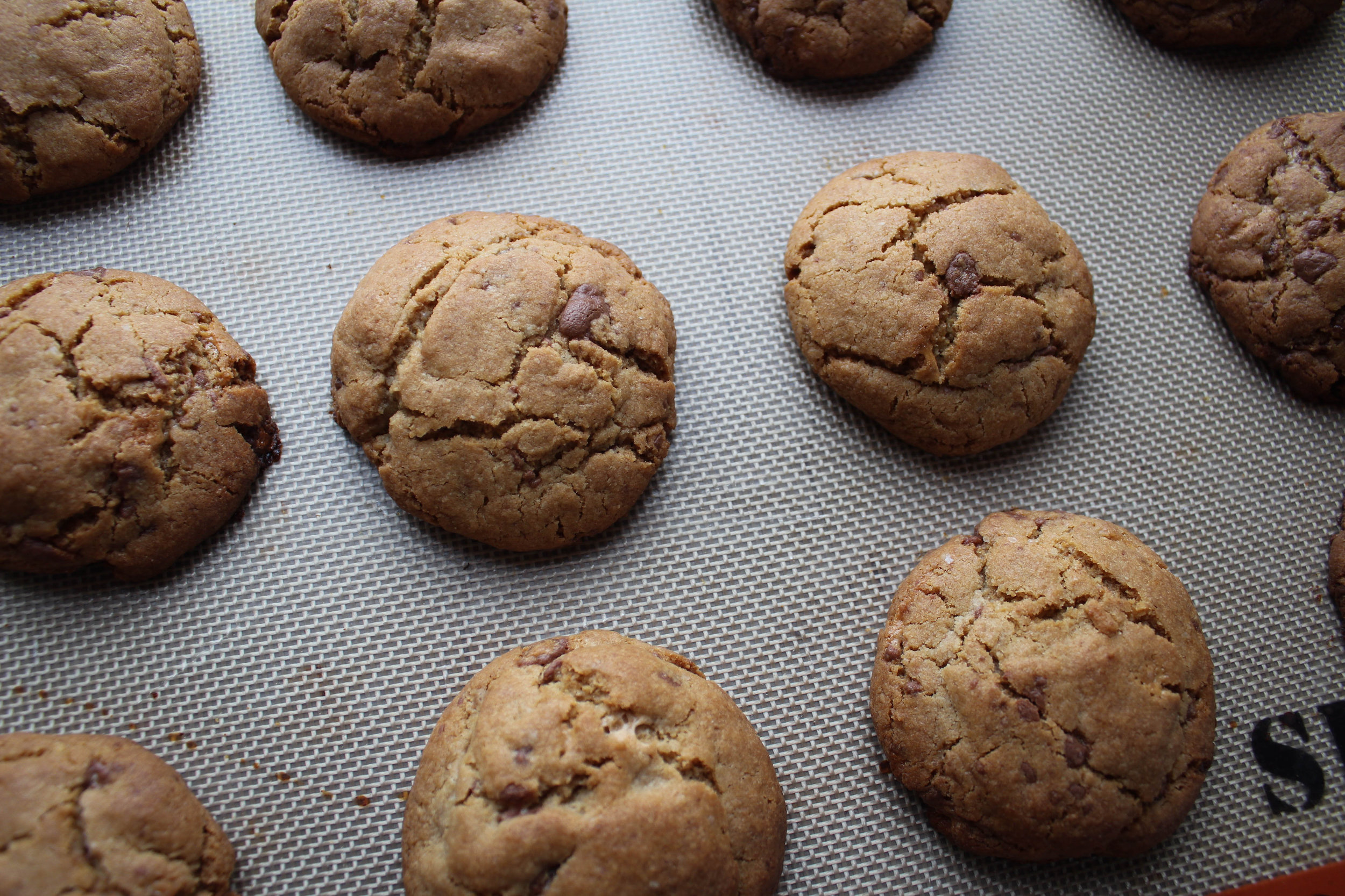 Malted Milk Ball and Tahini Cookies
