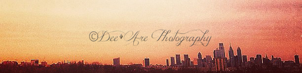 cropped skyline.jpg