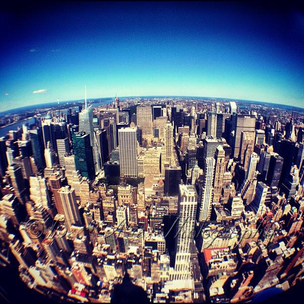 NYC Skyline Fisheye.jpg