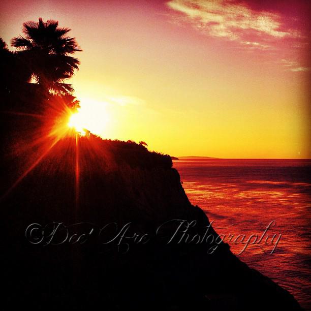 Sunset on cliff.jpg
