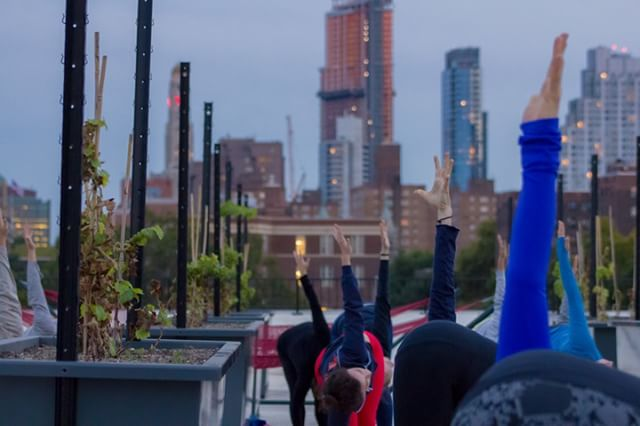 Yoga & Wine: Does it truly get better? Tonight's Yoga class led by @prospectheightsyoga has tickets left and can be purchased with the link in our bio 🧘‍♀️🧘‍♂️ Class starts at 7pm. See ya there yogis!⠀⠀⠀⠀⠀⠀⠀⠀⠀ .⠀⠀⠀⠀⠀⠀⠀⠀⠀ .⠀⠀⠀⠀⠀⠀⠀⠀⠀ .⠀⠀⠀⠀⠀⠀⠀⠀⠀ .⠀⠀⠀⠀⠀⠀⠀⠀⠀ #rooftopreds #rooftop #brooklyn #nycrooftop #brooklynrooftop #brooklynviews #nyc #rooftopviews #wine #winery #rooftopbar #vino #wino #brooklynnavyyard #nywine #thingstodoinbrooklyn #thingstodoinnyc #explorebrooklyn #vineyard #hammocks #hammockchillin #rooftopyoga #nycyoga #nycyogi #nycyogaclass