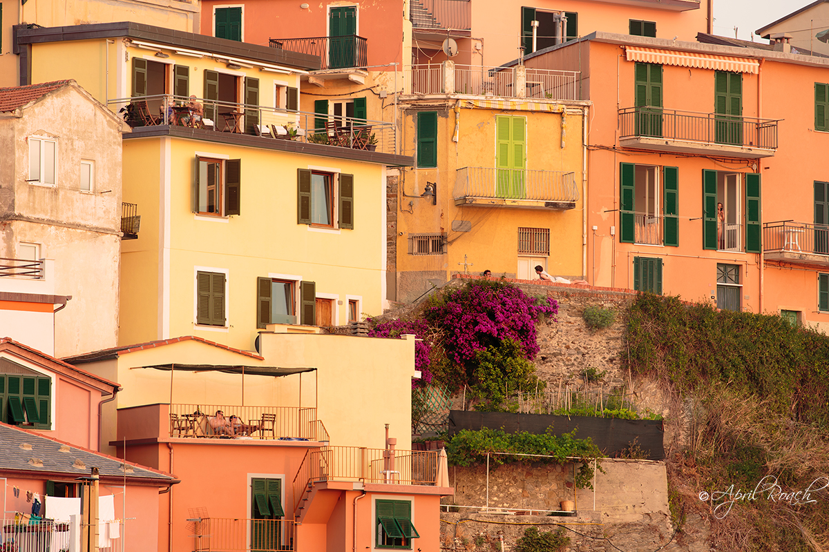 A close up view of Manarola life