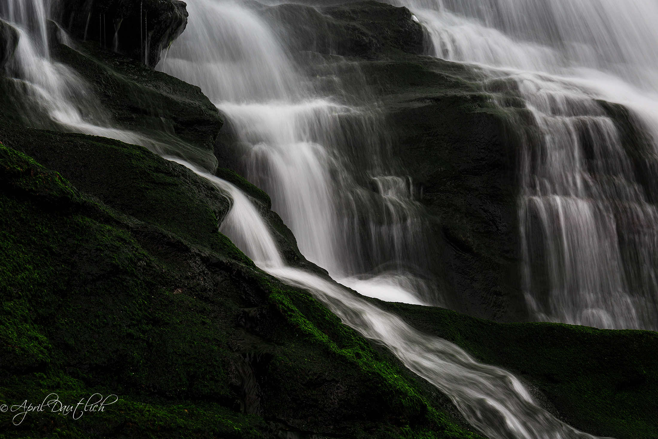 Tintagel Waterfall Detail_logo.jpg