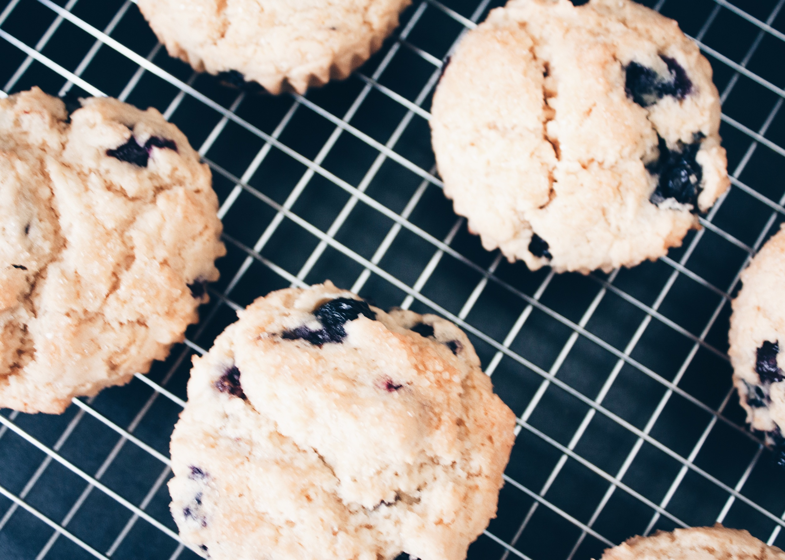sam-c-perry-Easy-Gluten-Free-Blueberry-Biscuits-2.jpg