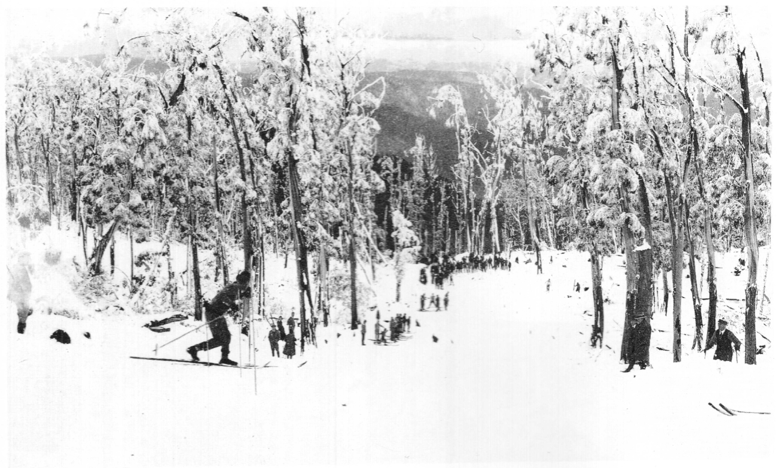 Looking down the Ski Slide (later widened, extended and renamed the Main Run) in 1929. Photo probably by Monty Kent Hughes.