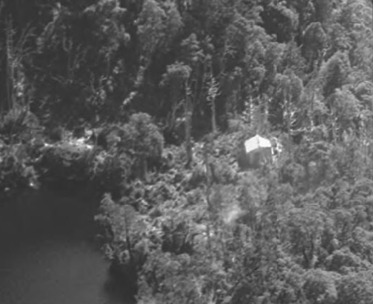 Detail of the original Tahune Hut among King Billy pines from Hurley's 1947 photo.