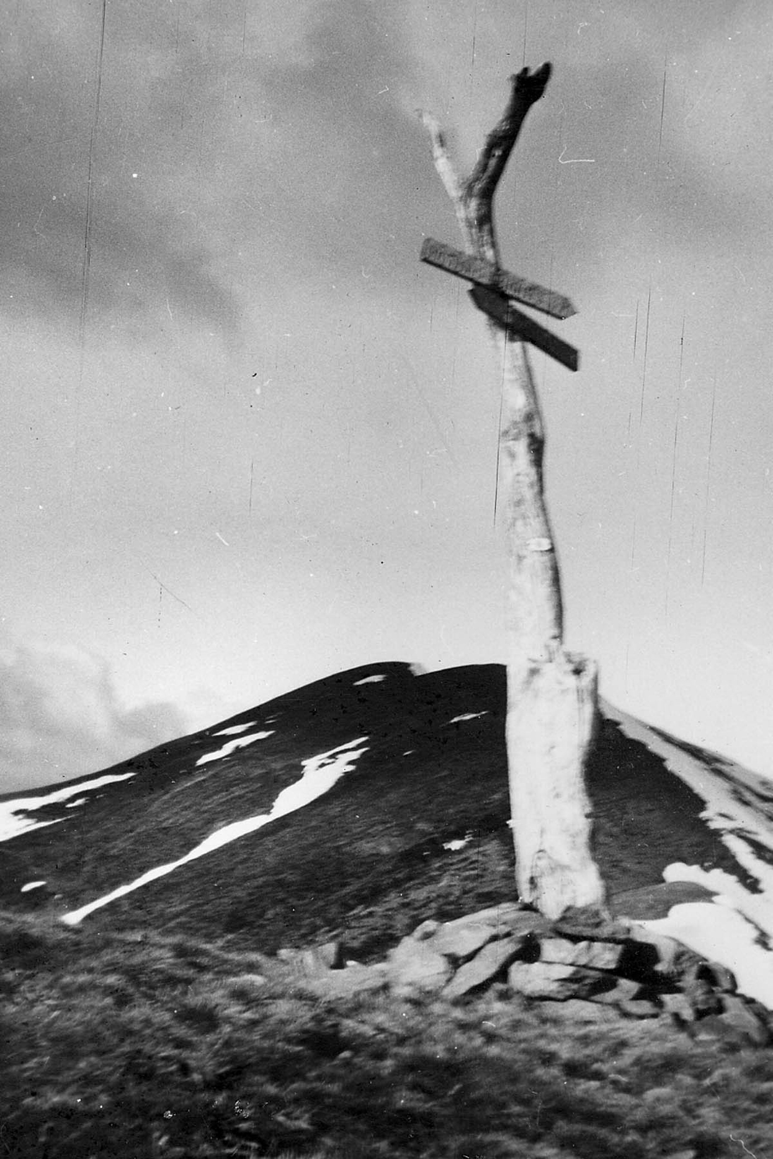 Signpost to Hotham – approach to Feathertop summit. located where the Razorback meets Bungalow Spur. Photo W. H. Jemison, October 1950. ©  High Country Online . Used with permission.