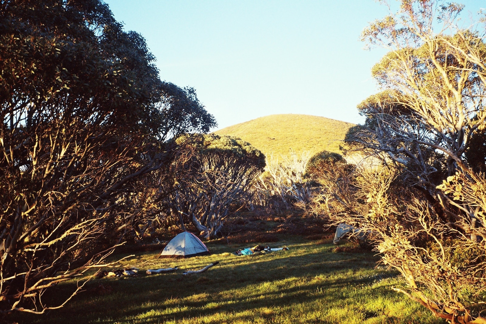 The campsite near the top of Diamantina Spur where it is proposed to build the new huts. Photo © Taariq Hassan, 2017
