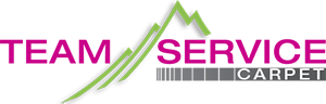 logo-Teamservice.png