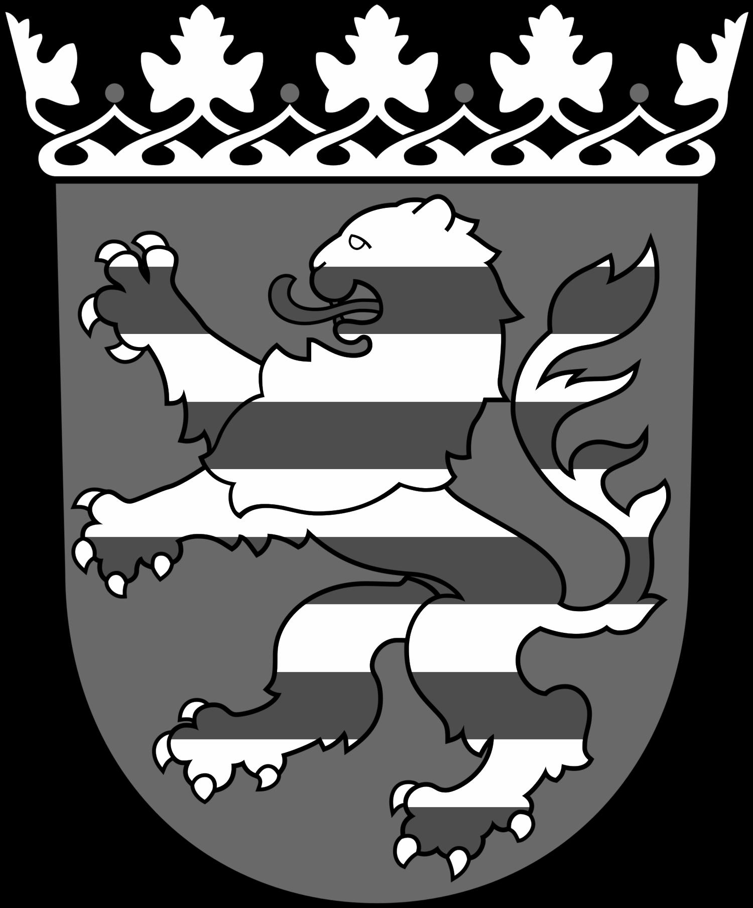Hessischer Rechnungshof