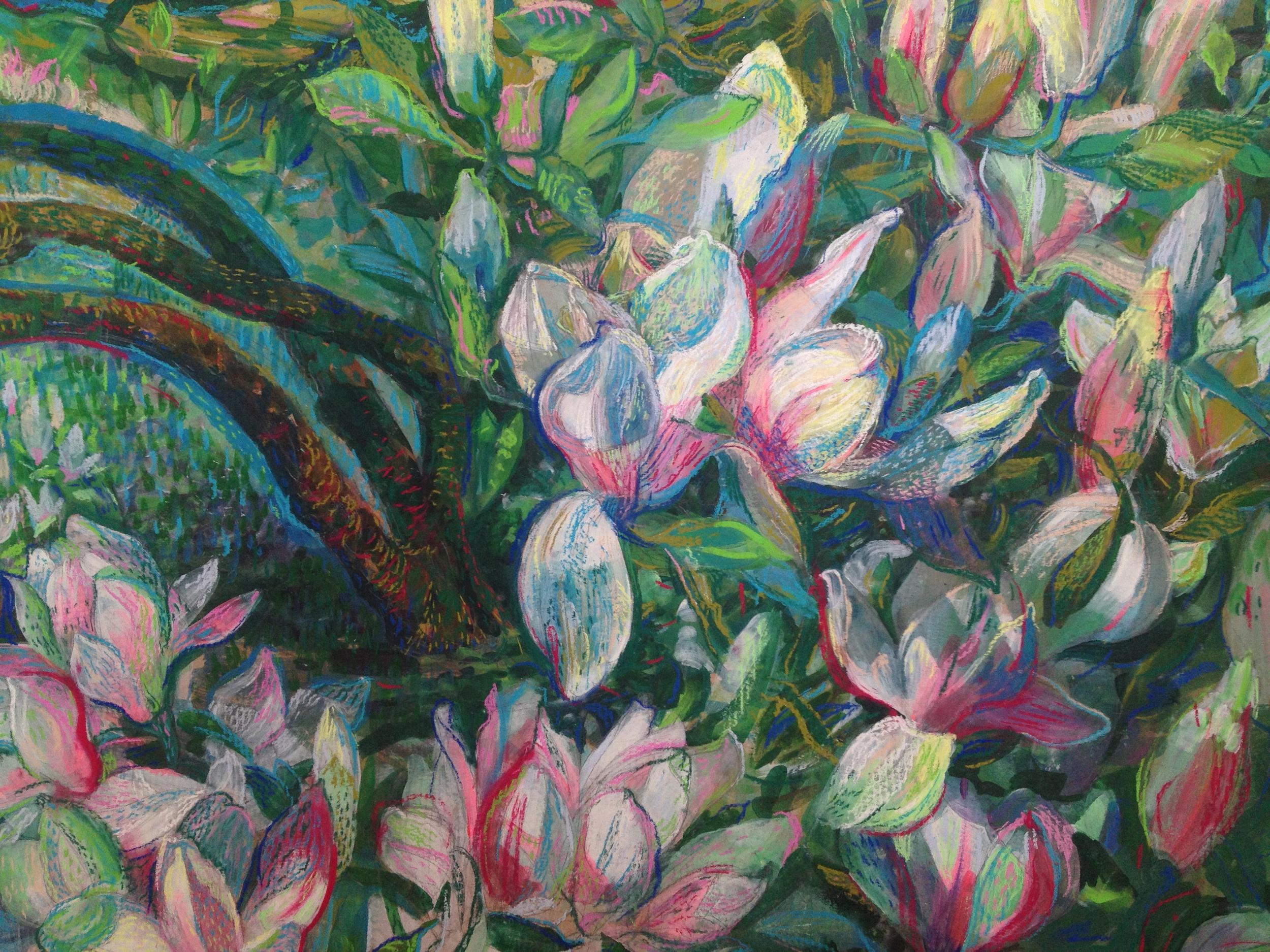Magnolia. Details