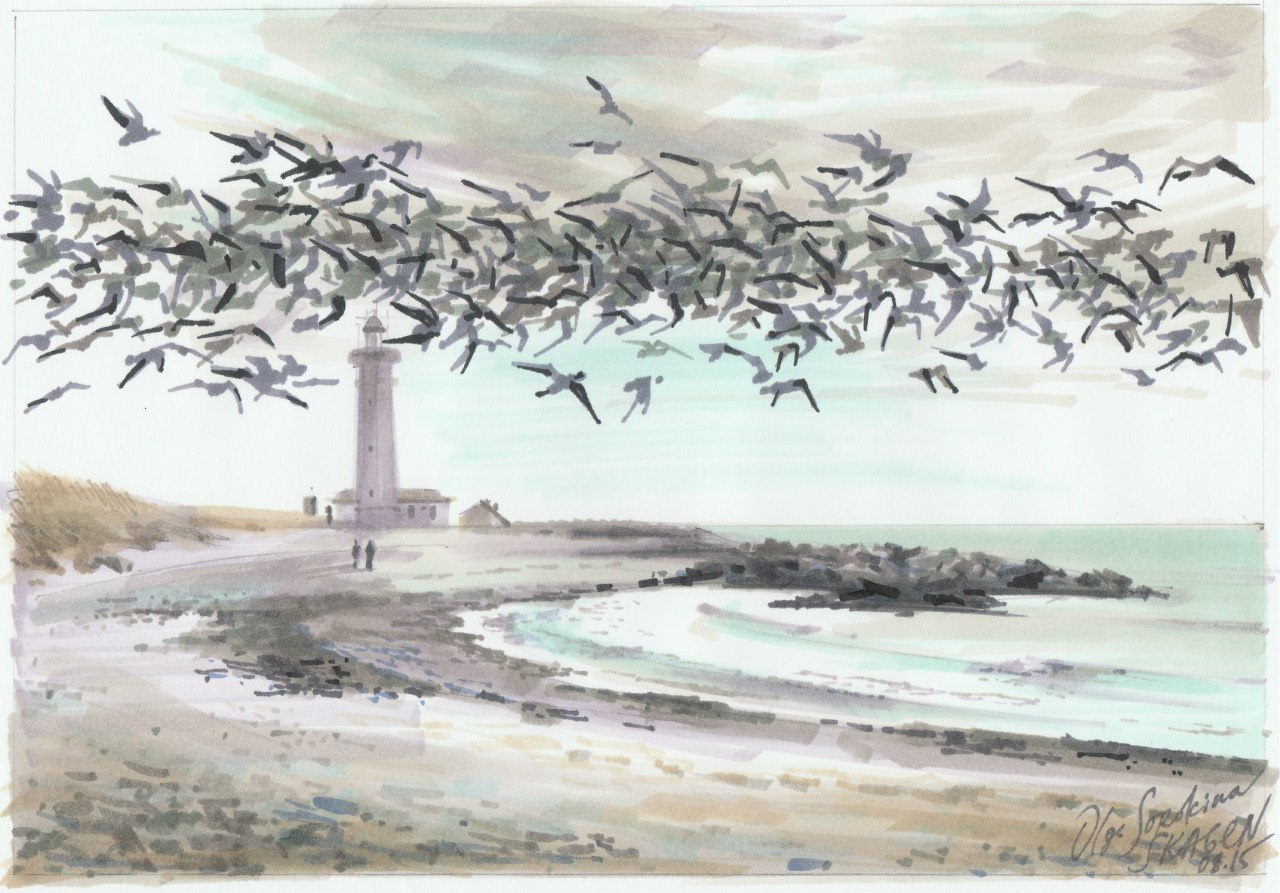 Birds of Skagen