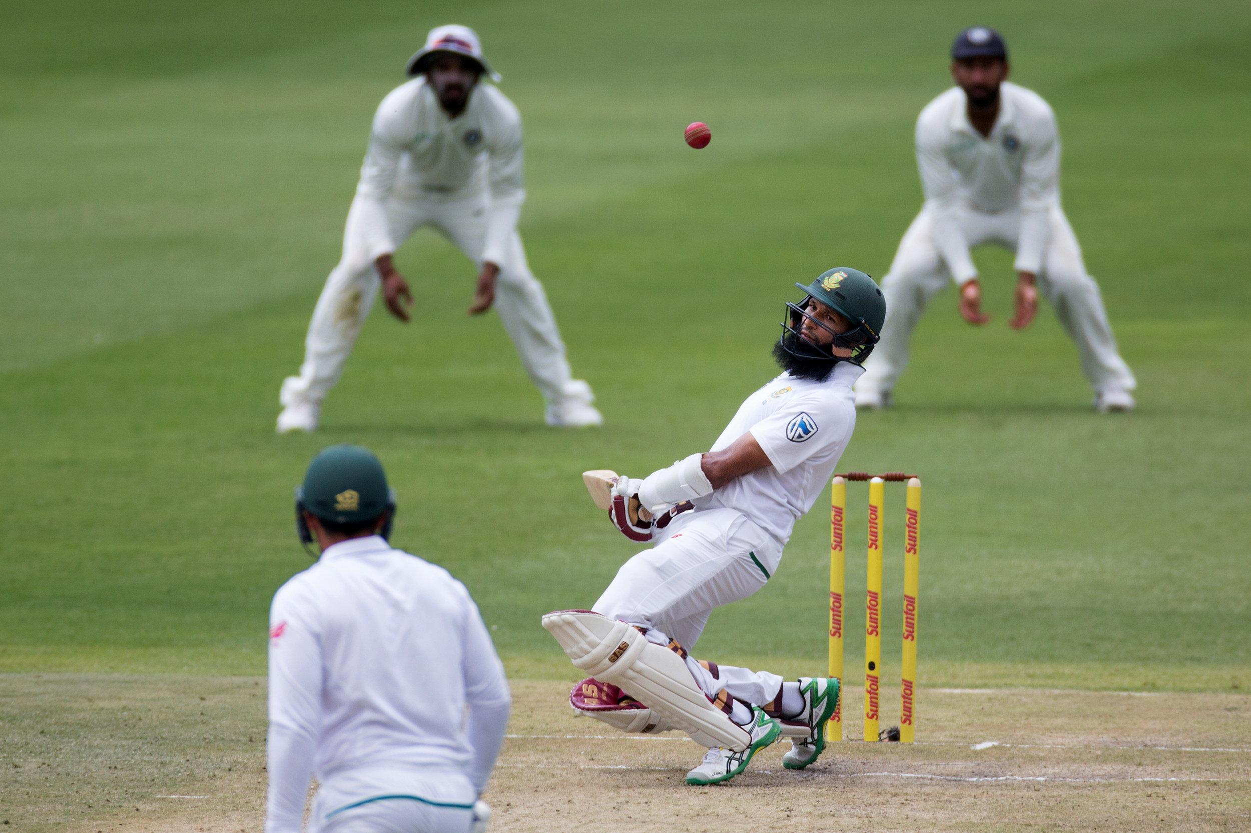 cricket10.jpg