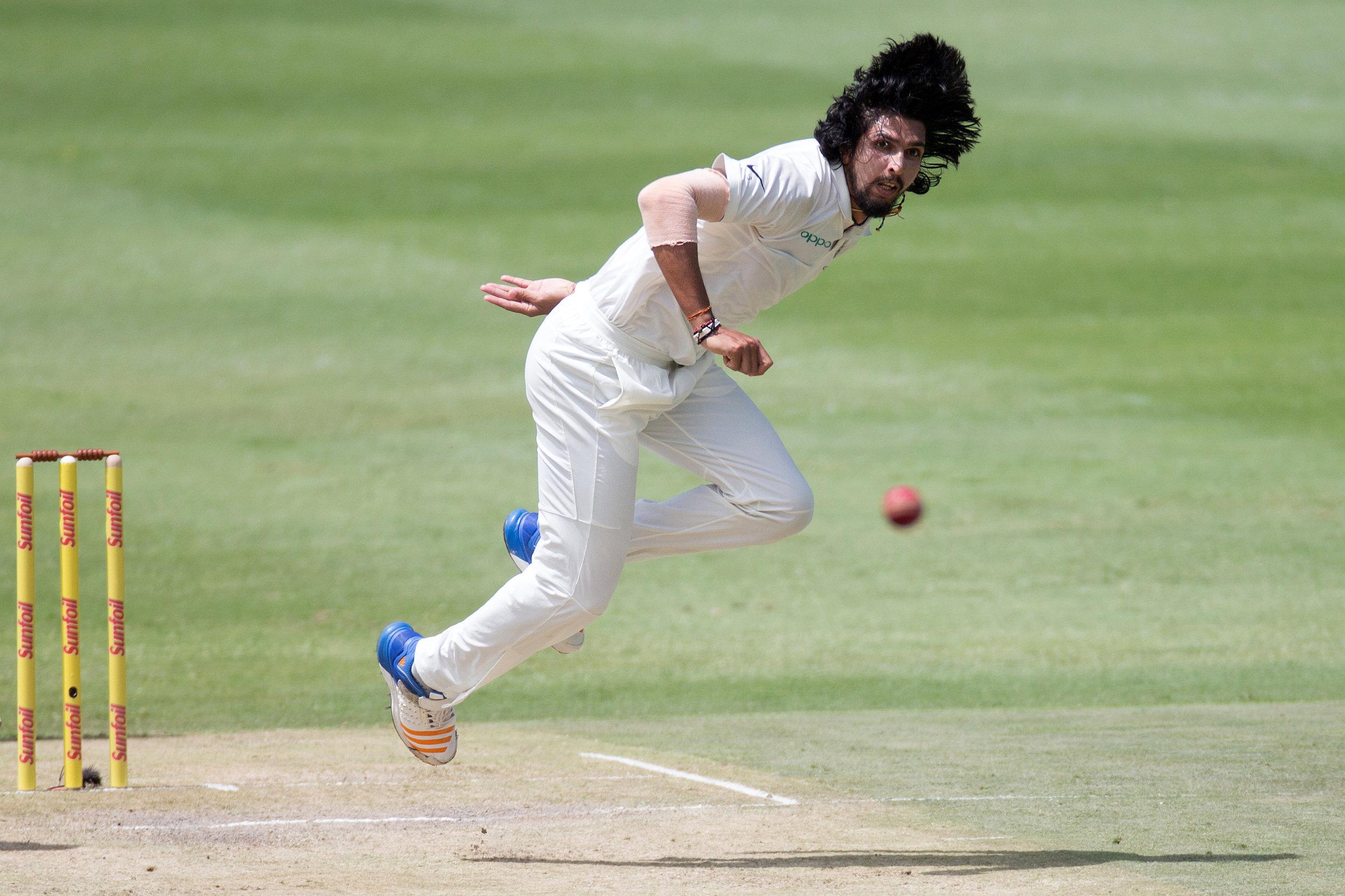 cricket13.jpg
