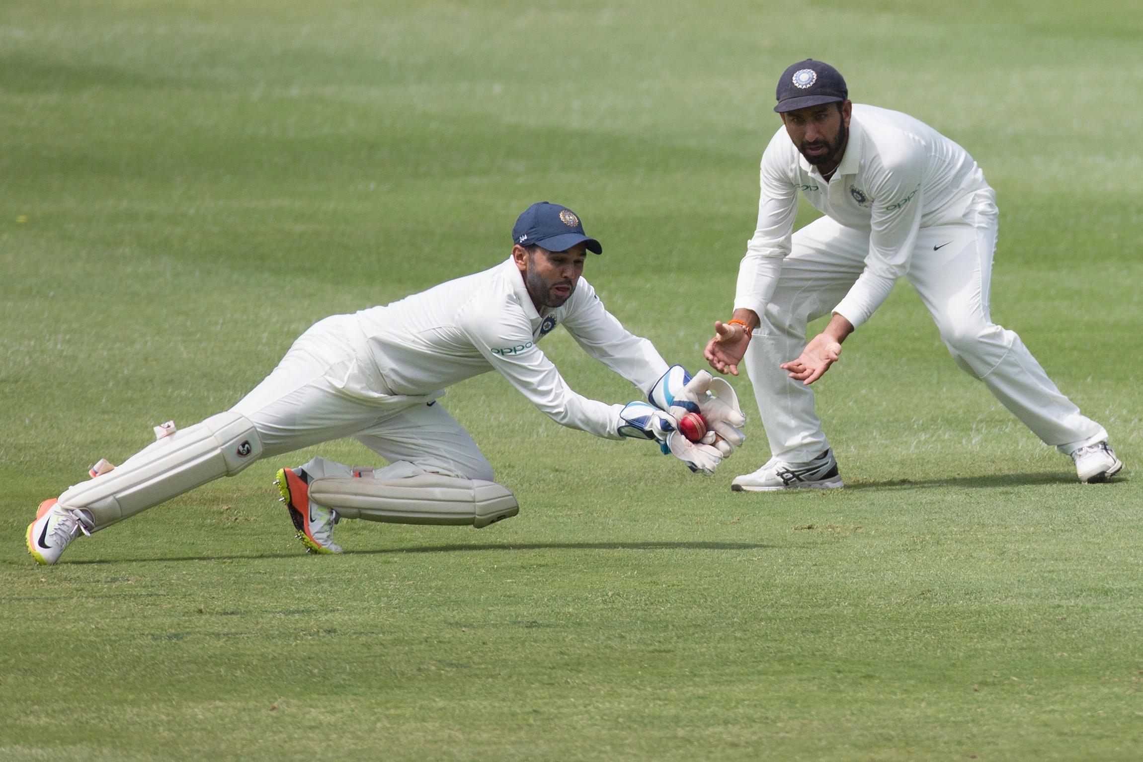 cricket14.jpg
