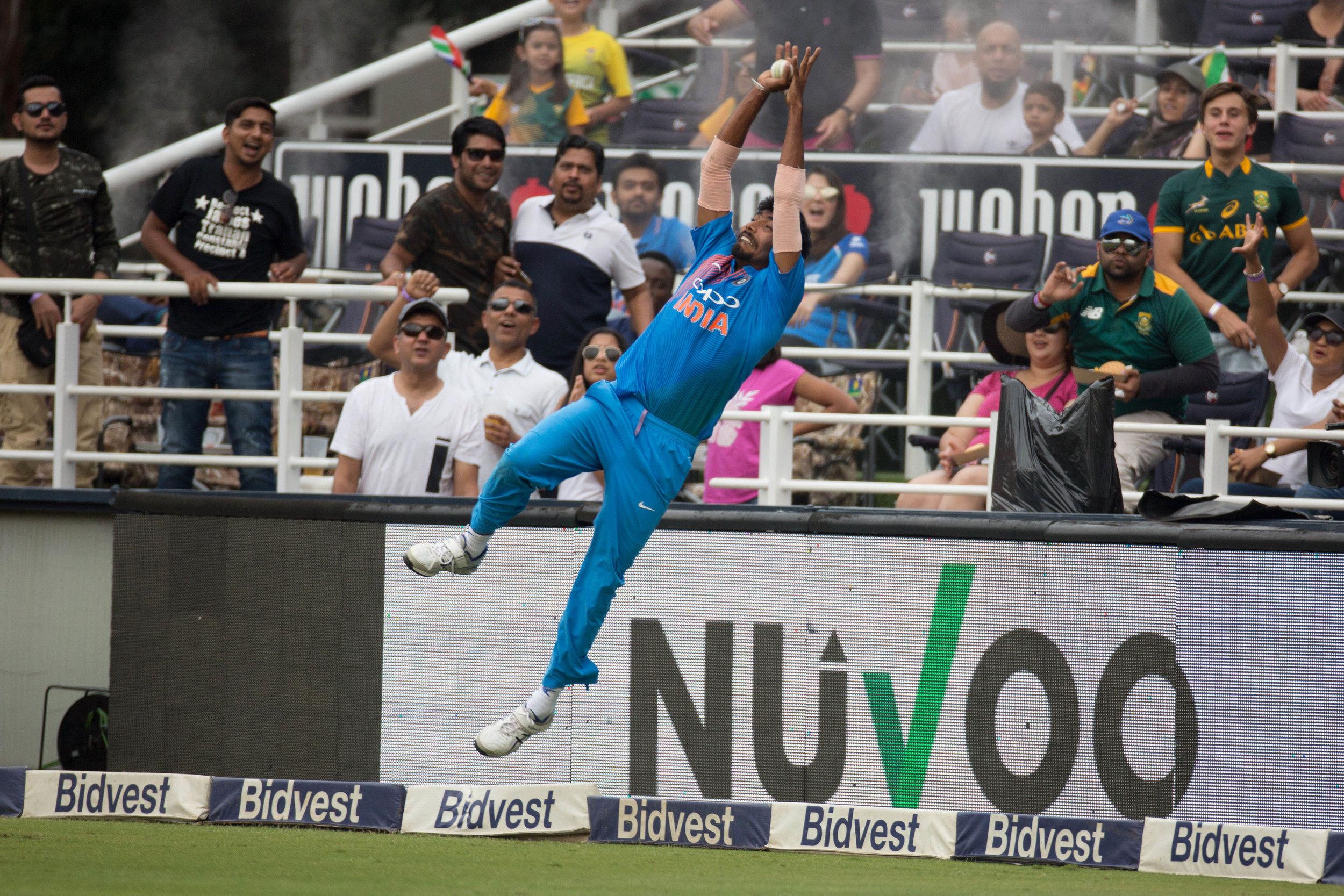 cricket16.jpg