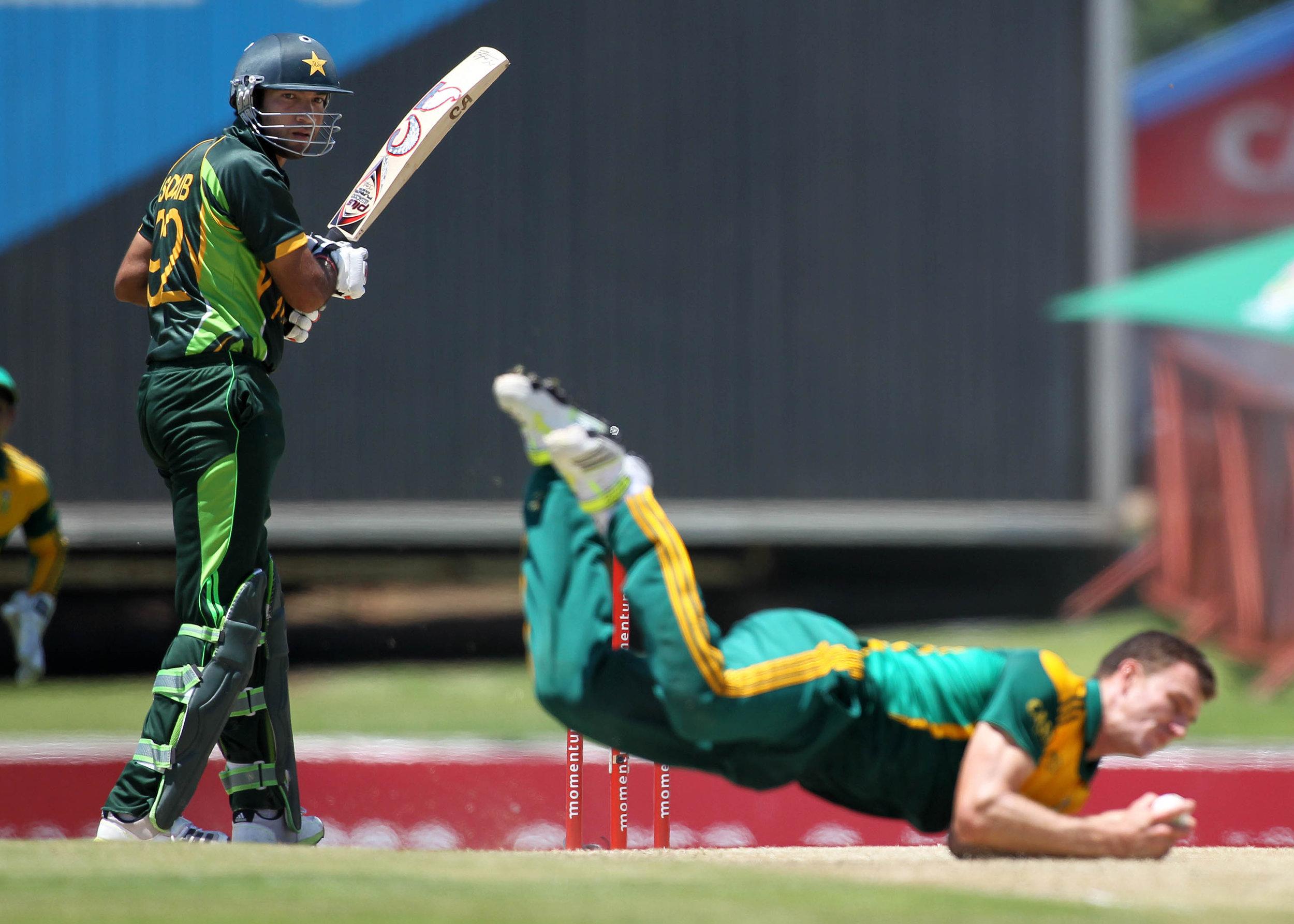 cricket19.jpg