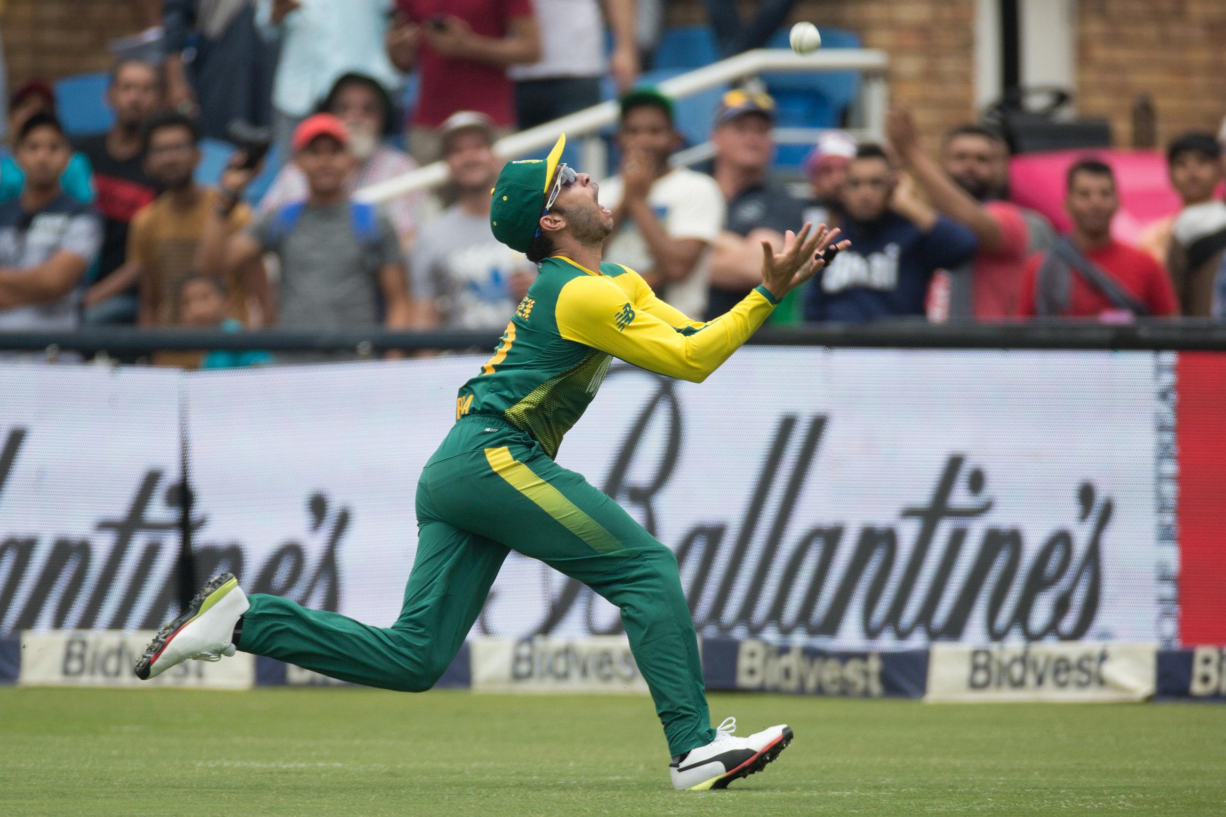 cricket18.jpg