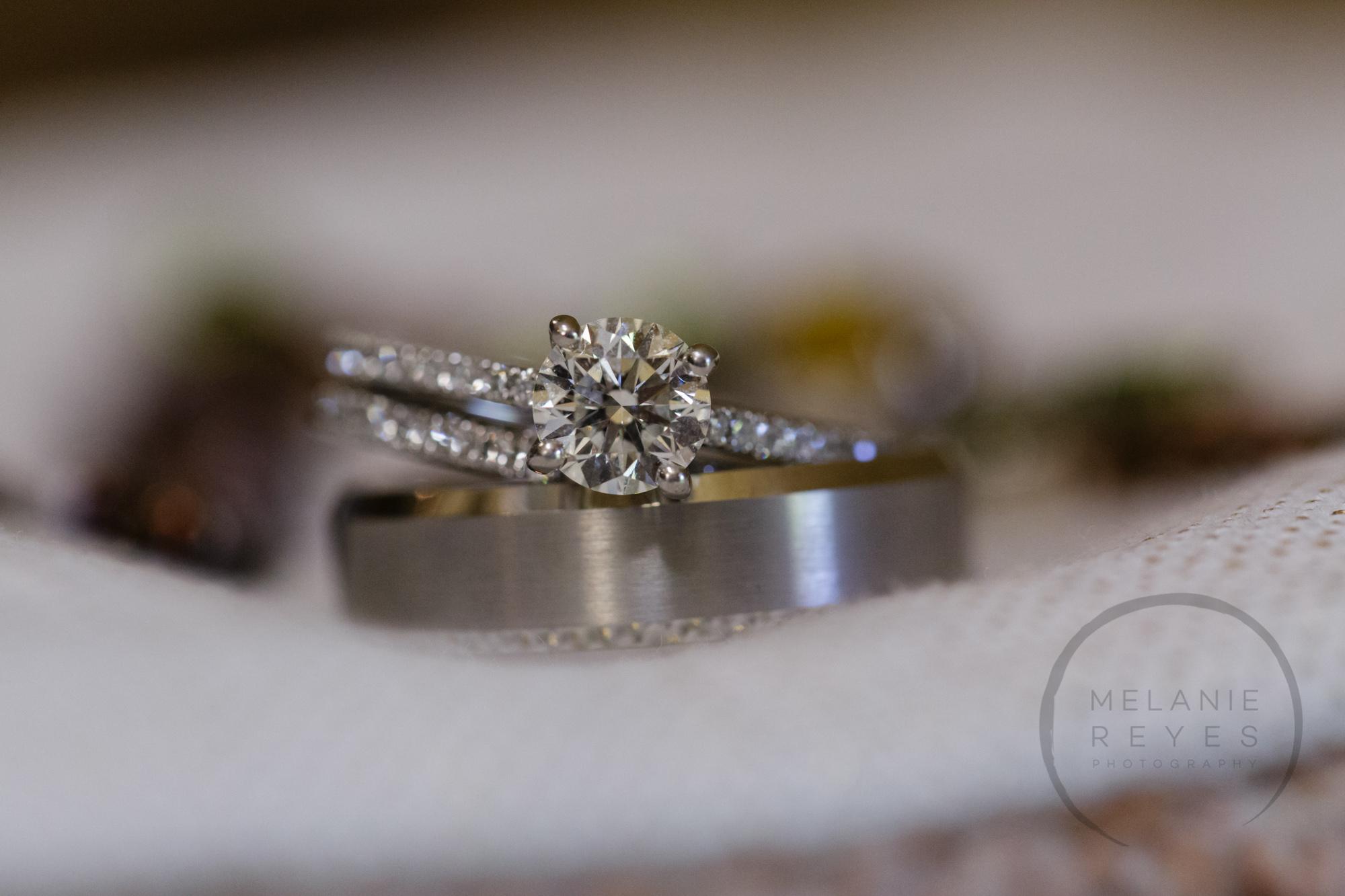 comer_earhart_manor_wedding_annarbor_003.jpg