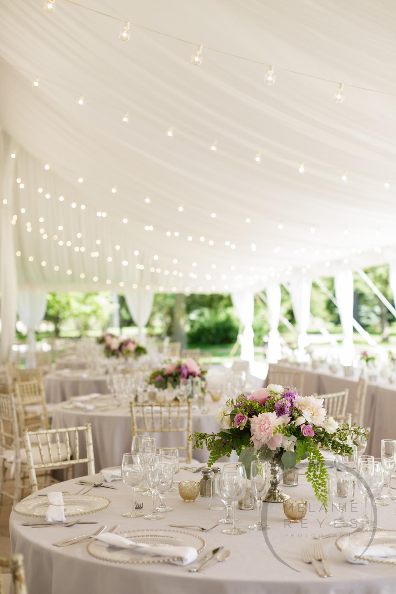 comer_earhart_manor_wedding_annarbor_033.jpg