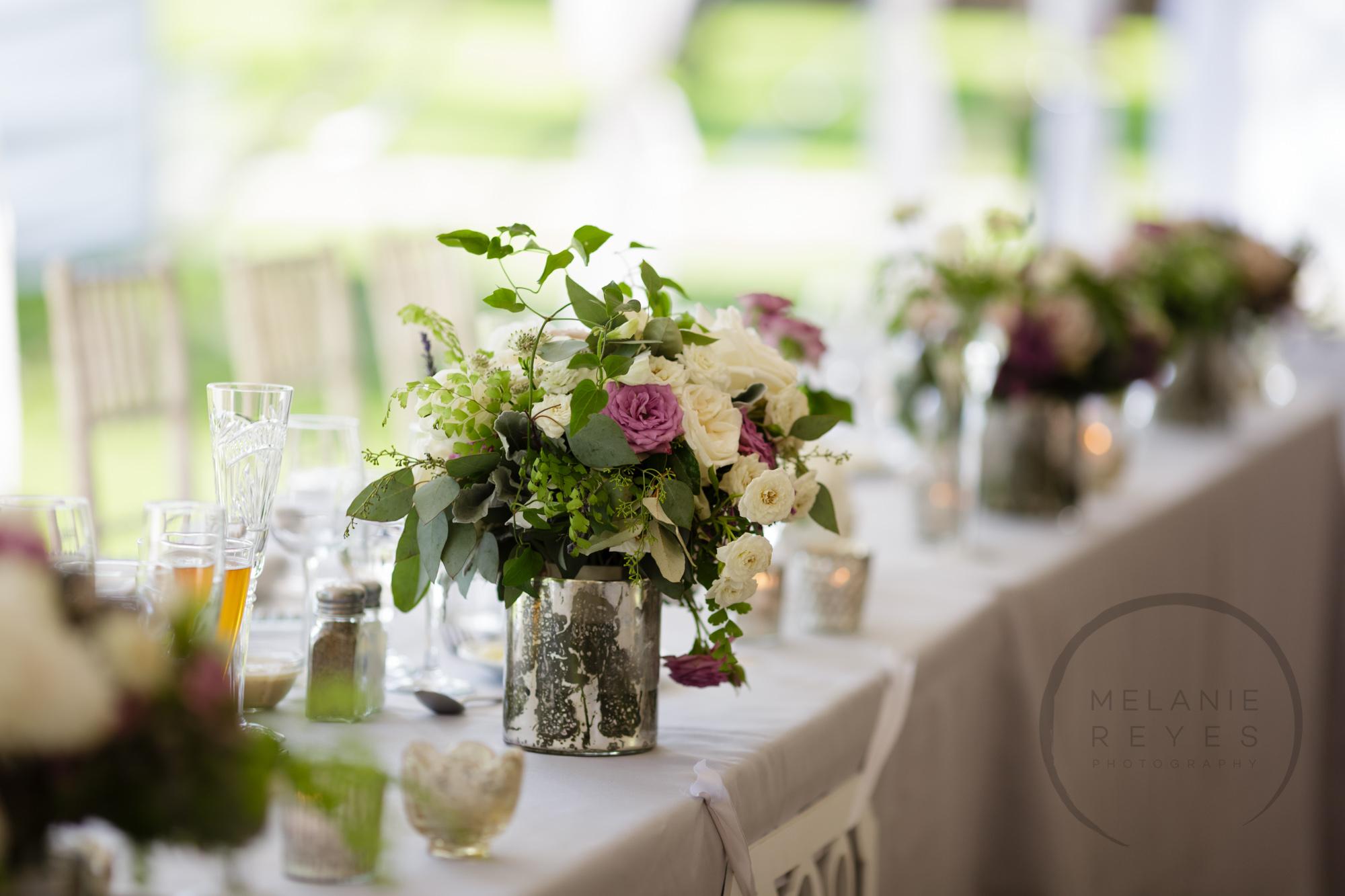 comer_earhart_manor_wedding_annarbor_057.jpg