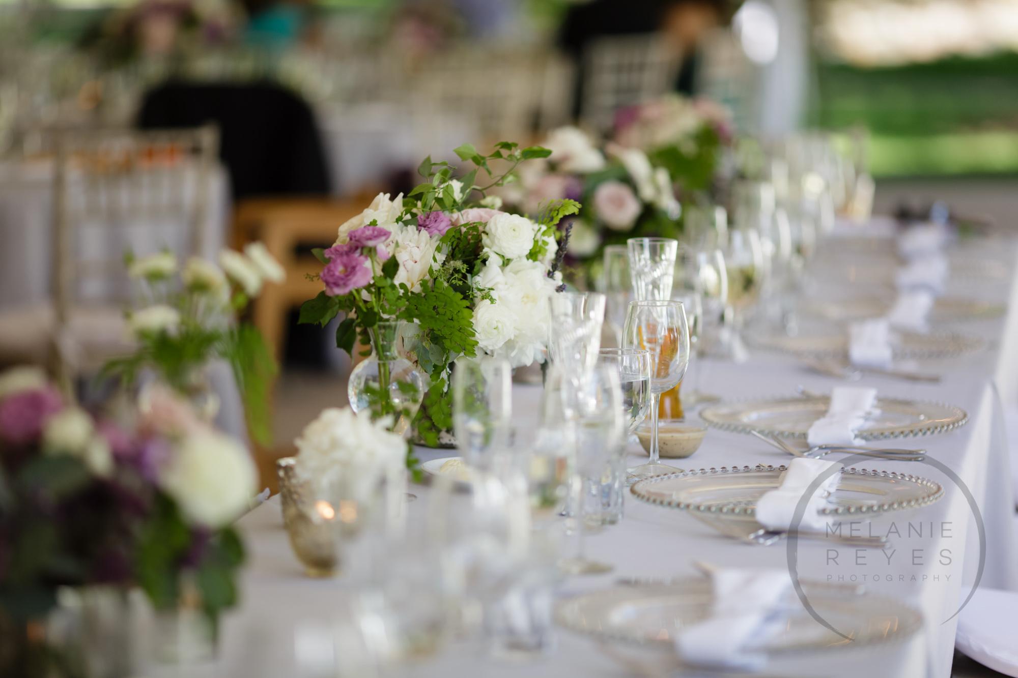 comer_earhart_manor_wedding_annarbor_059.jpg