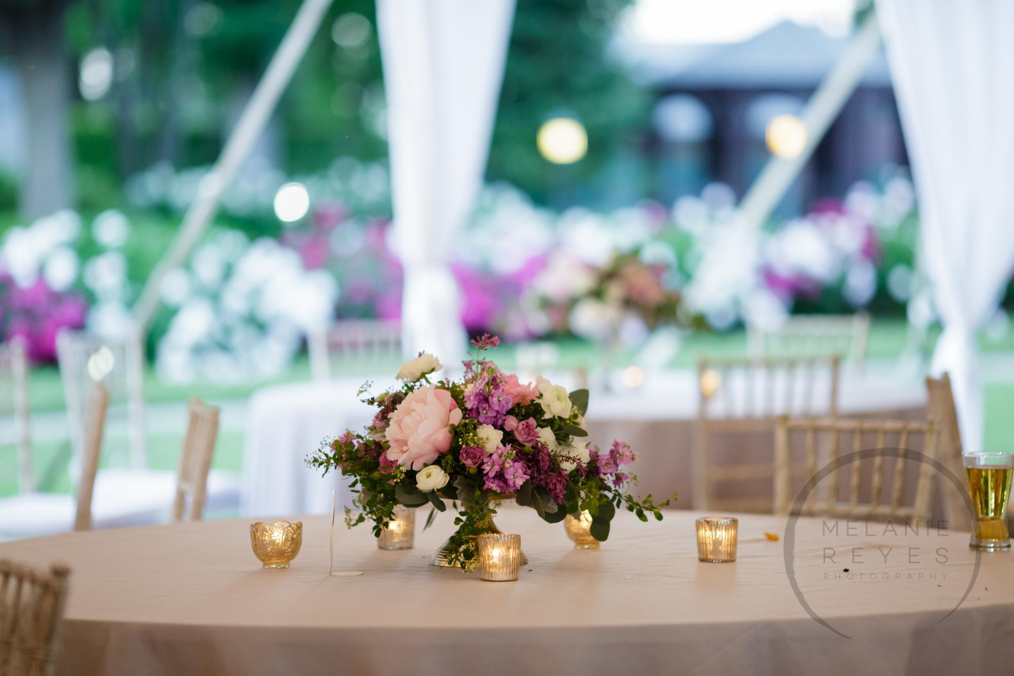 comer_earhart_manor_wedding_annarbor_092.jpg