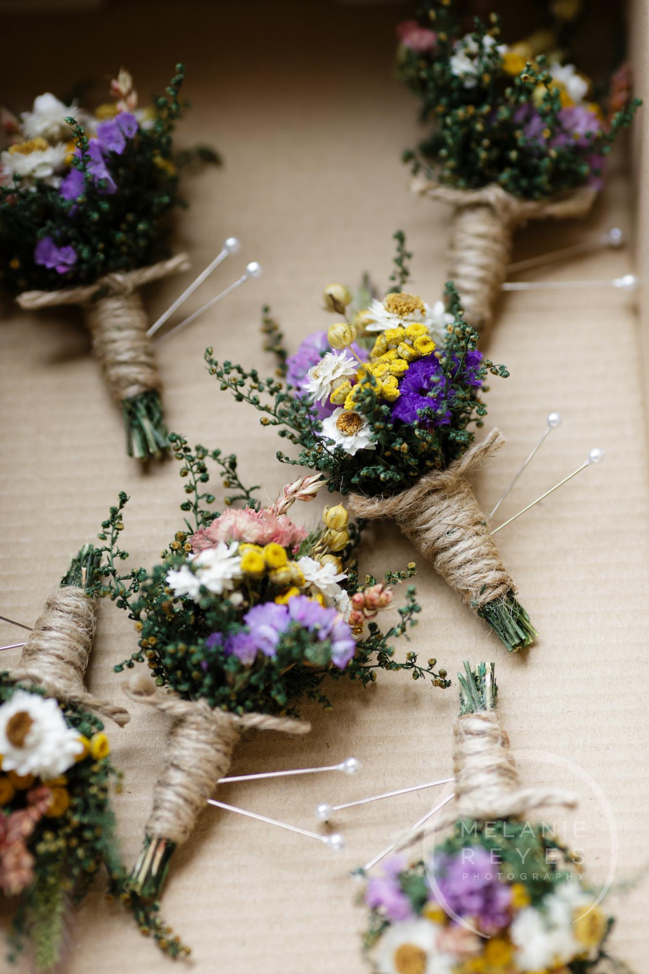 carlylewie_annarbor_wedding_-1.jpg