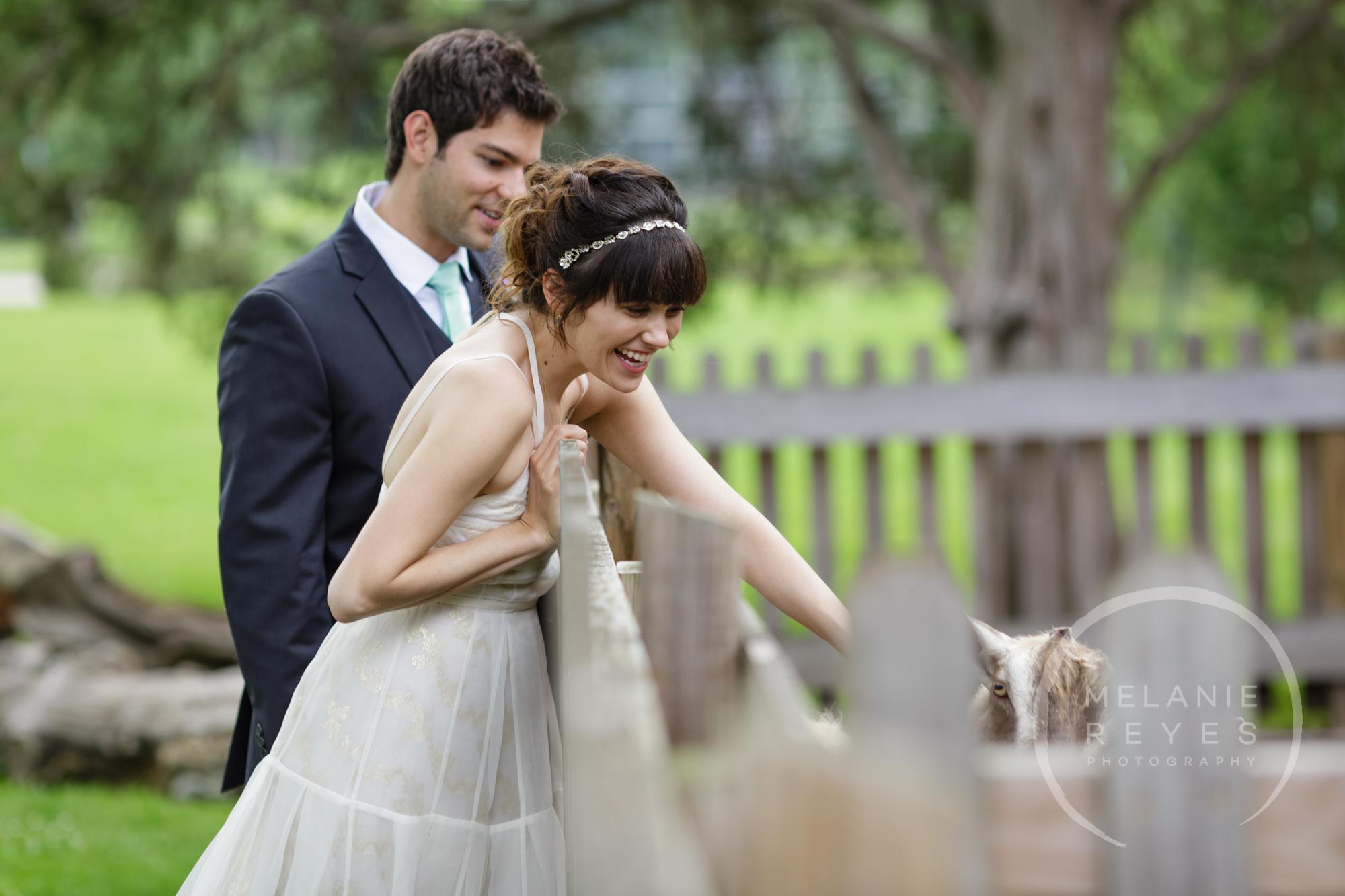 carlylewie_annarbor_wedding_-50.jpg