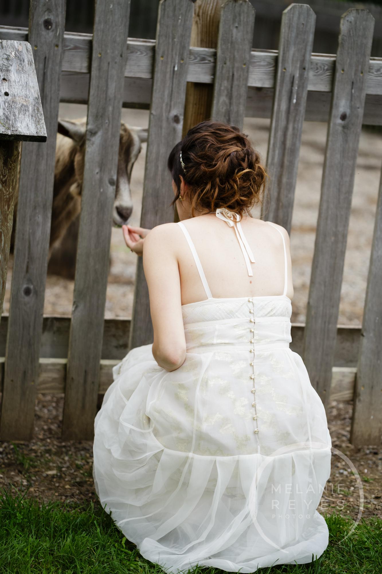 carlylewie_annarbor_wedding_-53.jpg