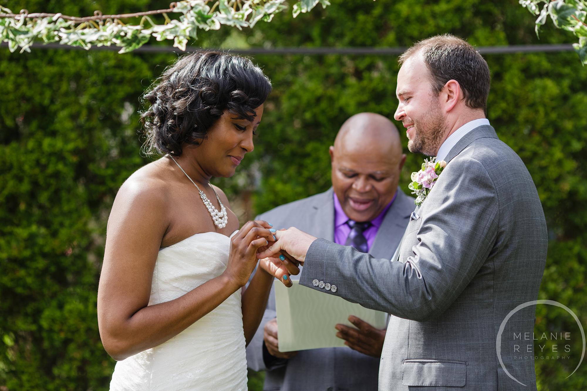 rings_backyard_wedding.jpg