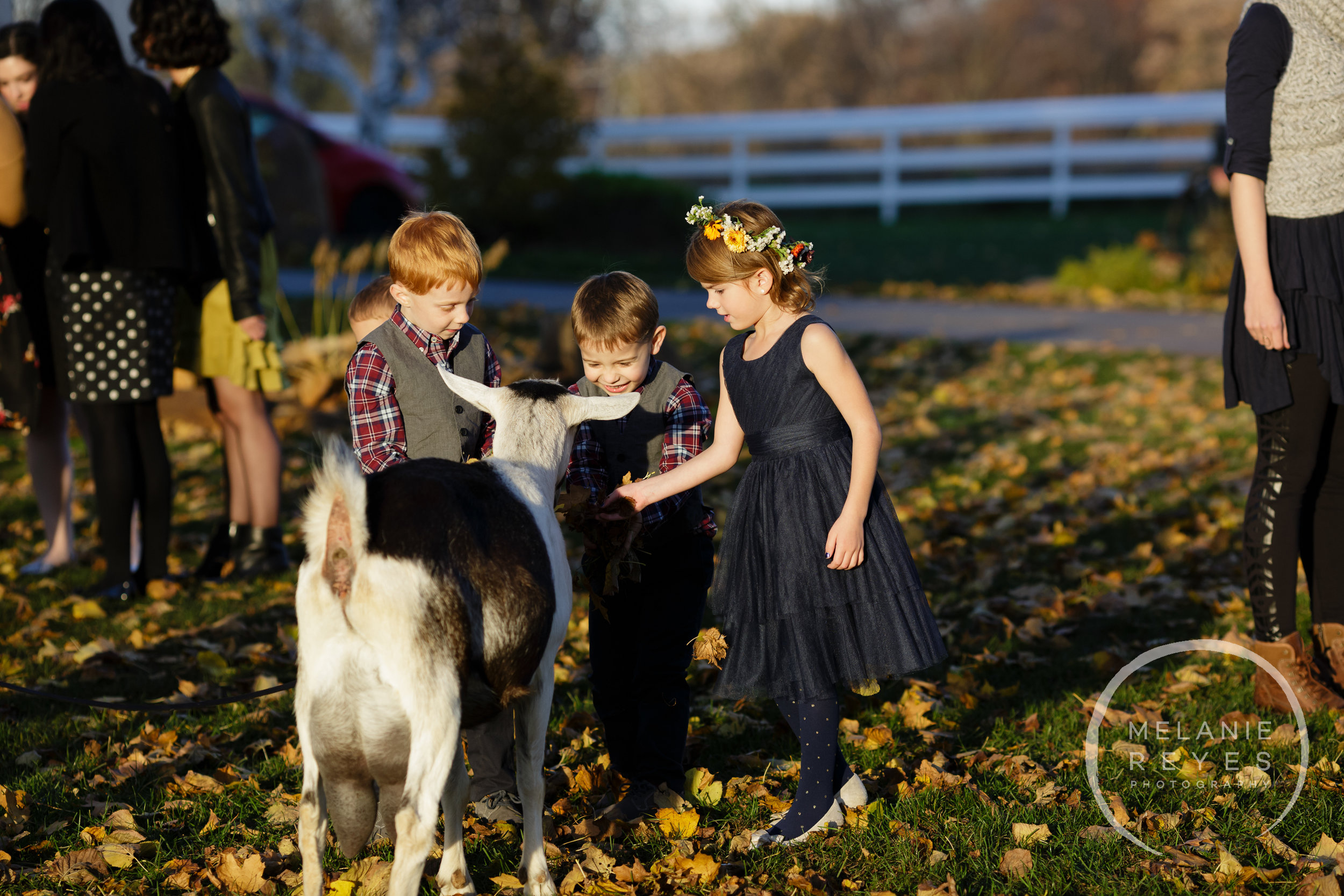 zingermans_cornman_farms_wedding_melanie_reyes_photography_038.JPG