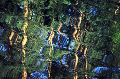Photo of rippling water reflecting trees