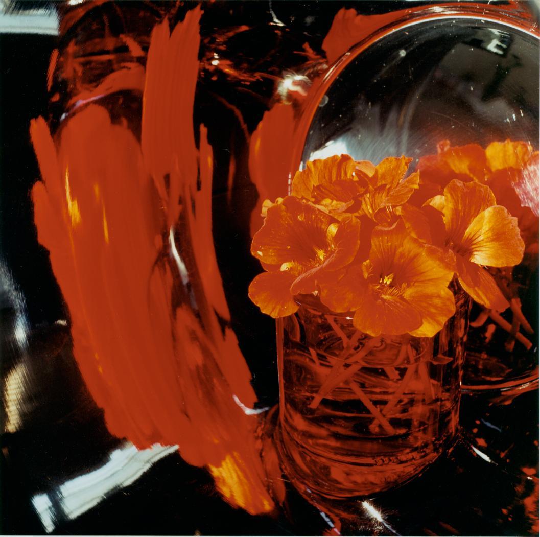 Sudden Splash of Red, 2006