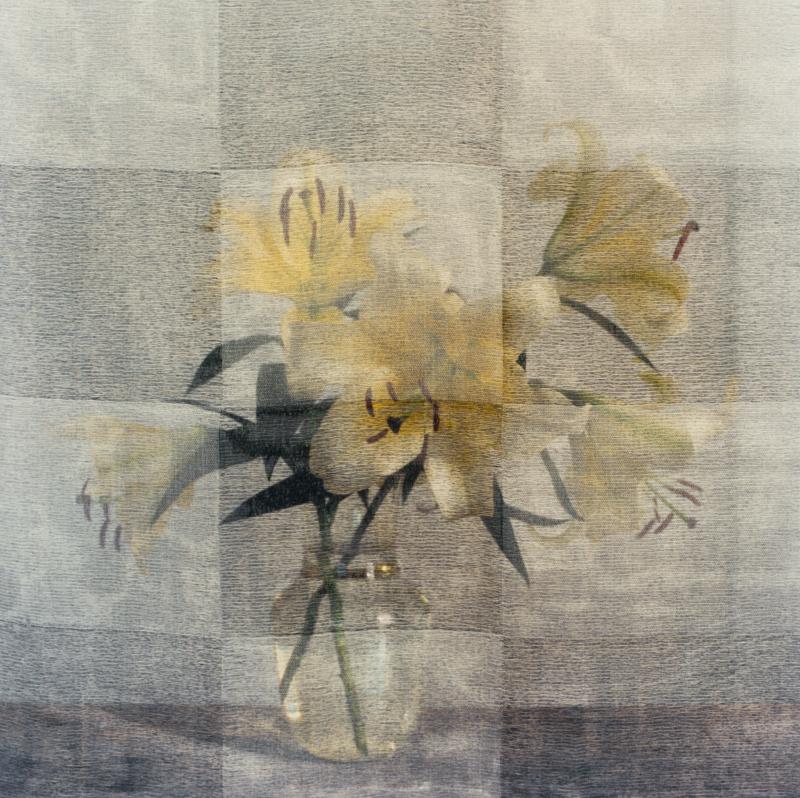PETER C JONES - Checkered Lilies, No.1, 2008 - W -.jpg