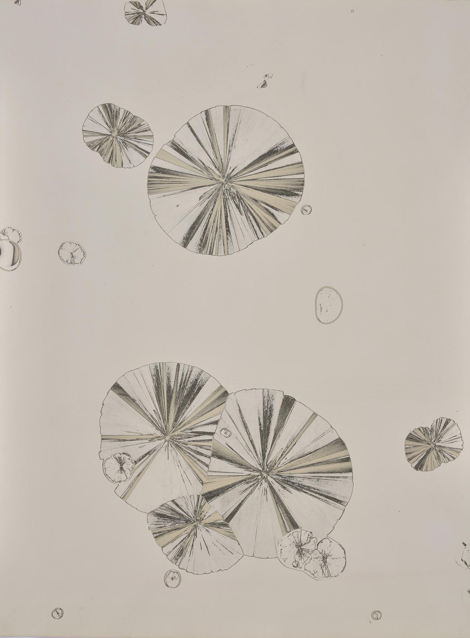 Matériographie, c. 1965-1970
