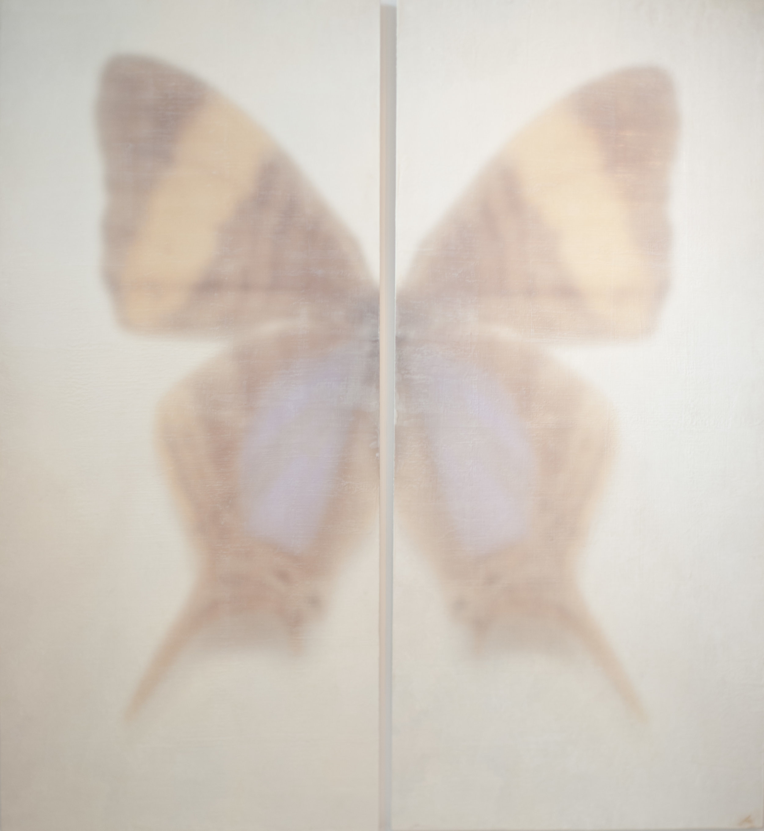 butterfly dyptich 35x80 inches each.jpg