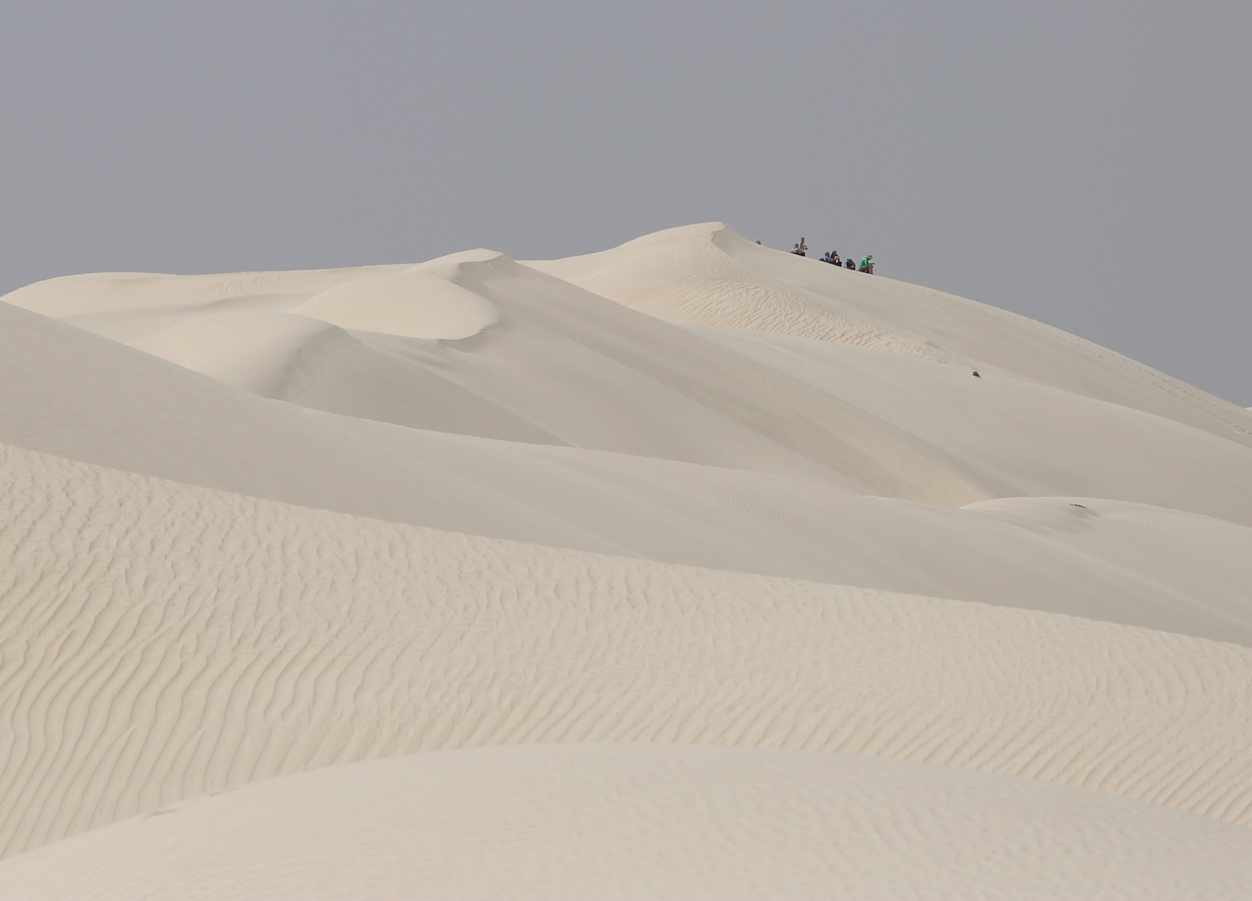 The team in the distance clearly visible on the Sugar Dunes...