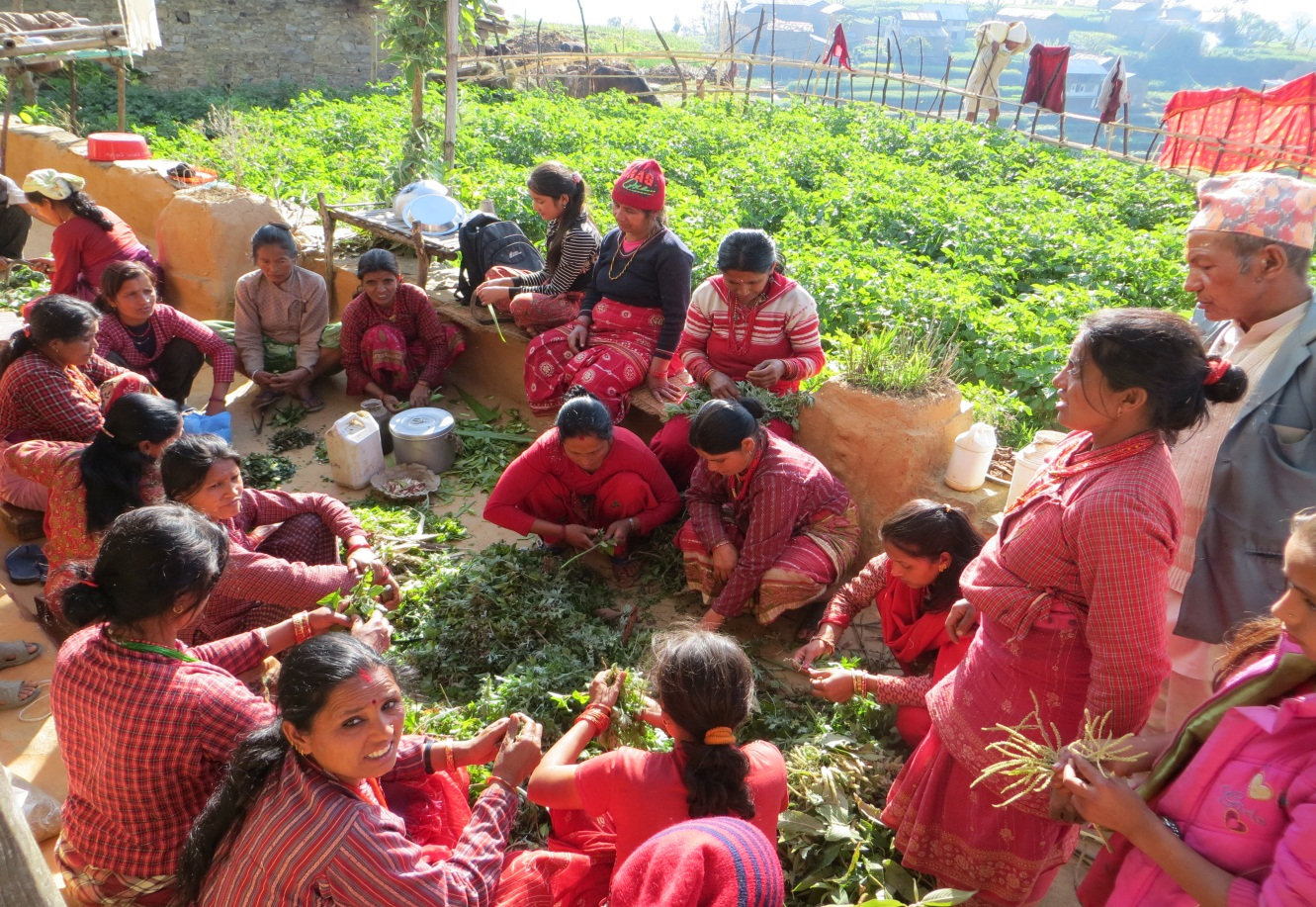 Farmers preparing bio-pesticides in Panchakanya, Sindhupalchowk