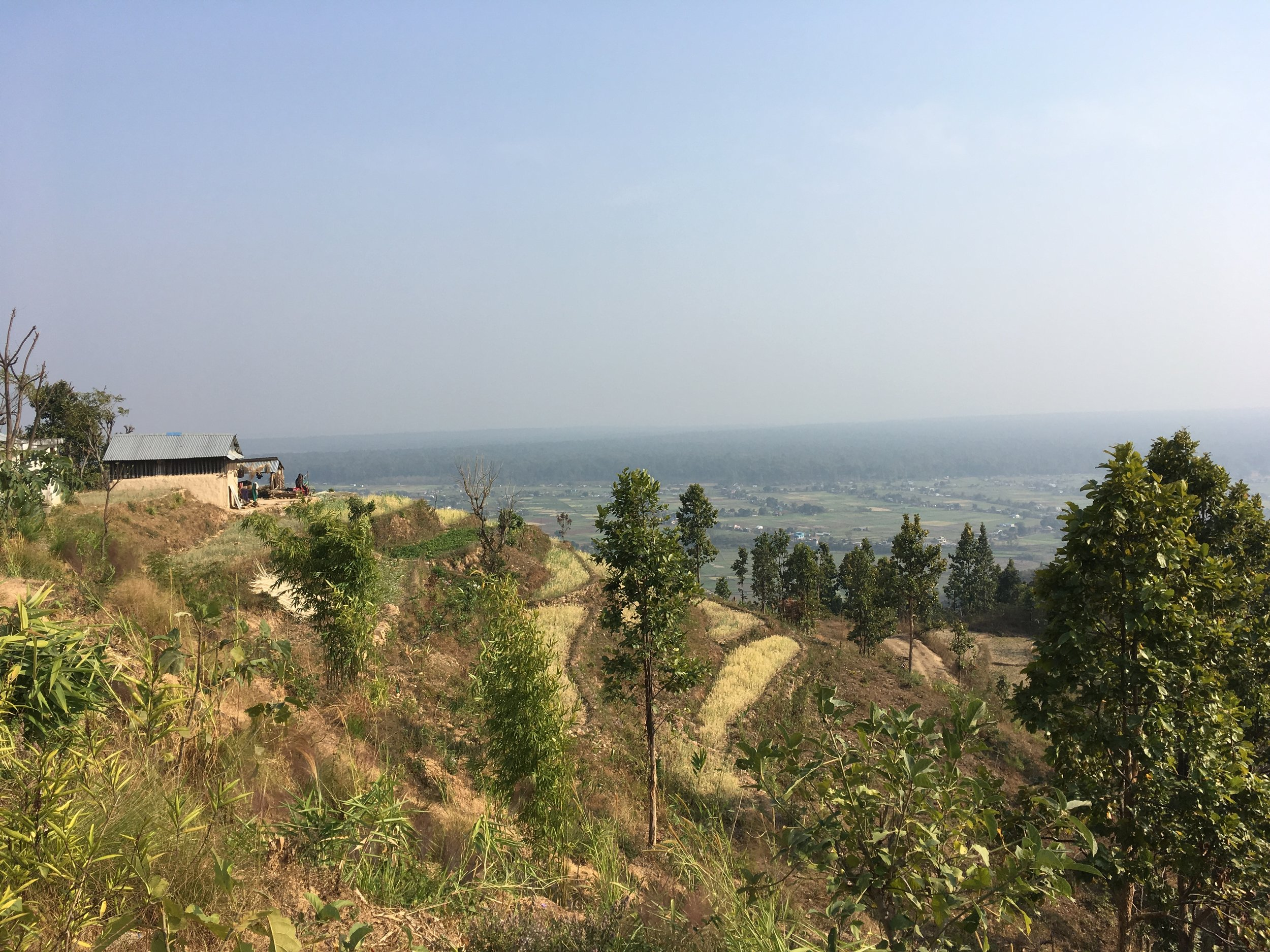 Overlooking the terraces in the village of Dhahaba and the extensive Terai plain that stretches deep south into India (February 2017)