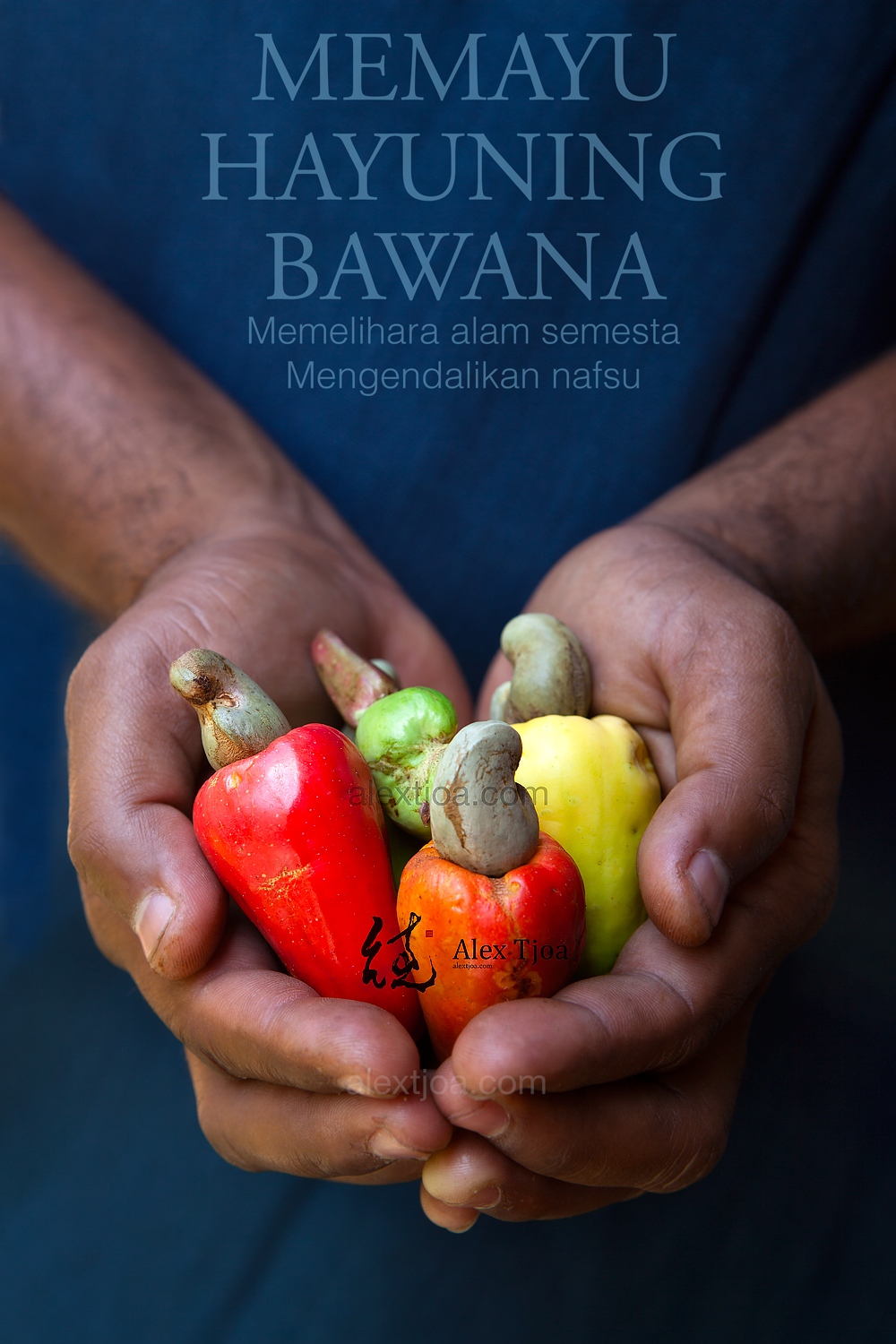 Organic fair-trade cashews