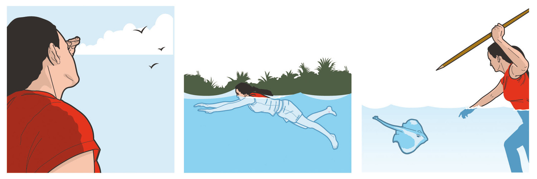 Michael-Vestner-Illustration-Wild-Island-ProSieben-11.jpg