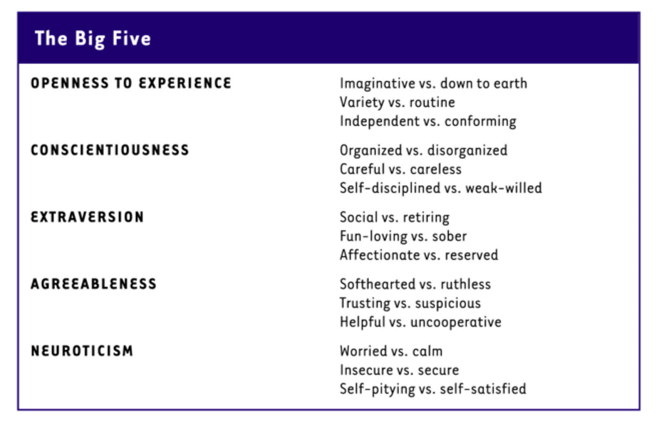 Alexander Nix's OCEAN acronym on psychographics. Includes openness to experience, conscientiousness, extraversion, agreeableness, neuroticism.