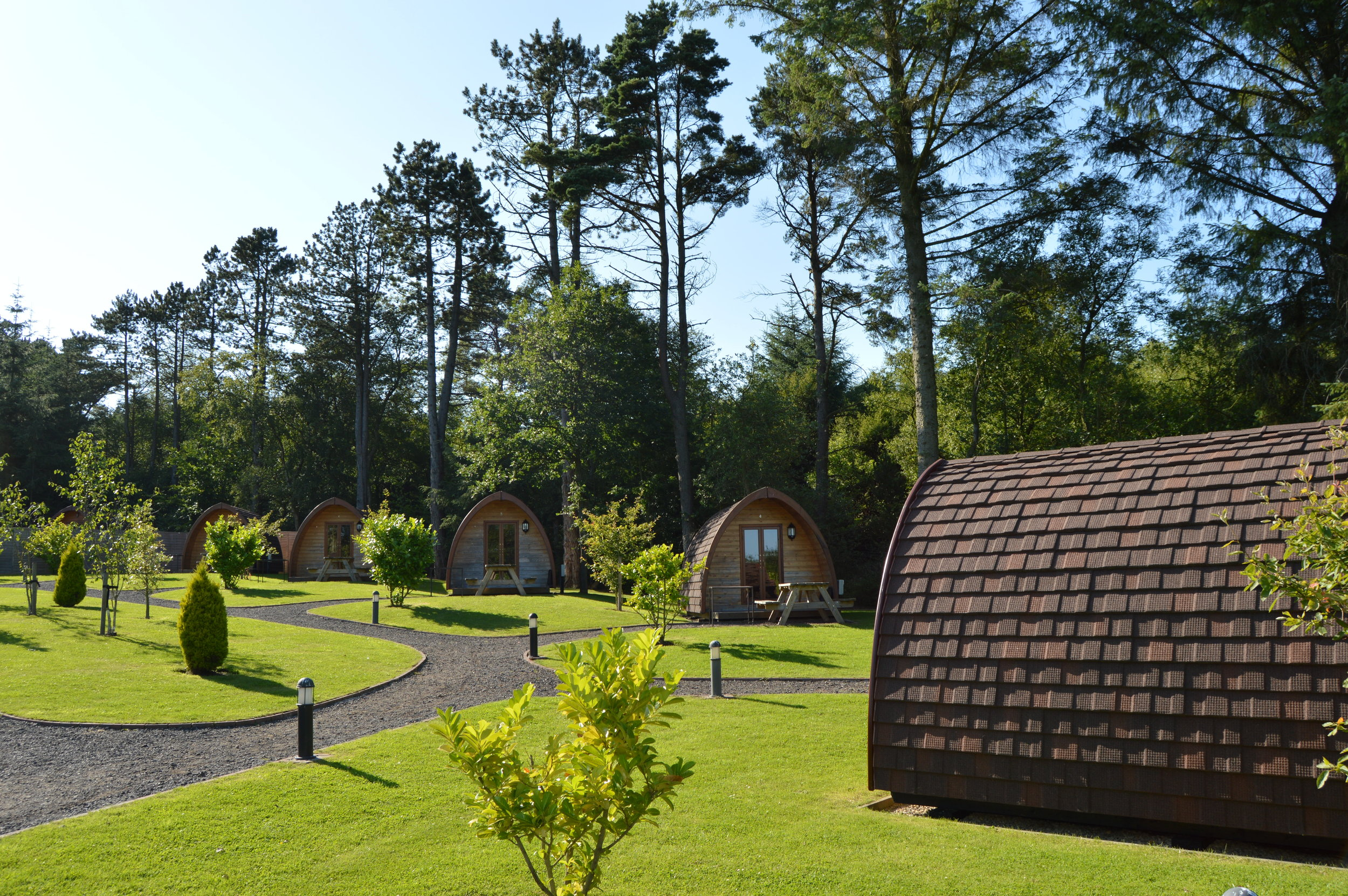 Falcon Forest Glamping