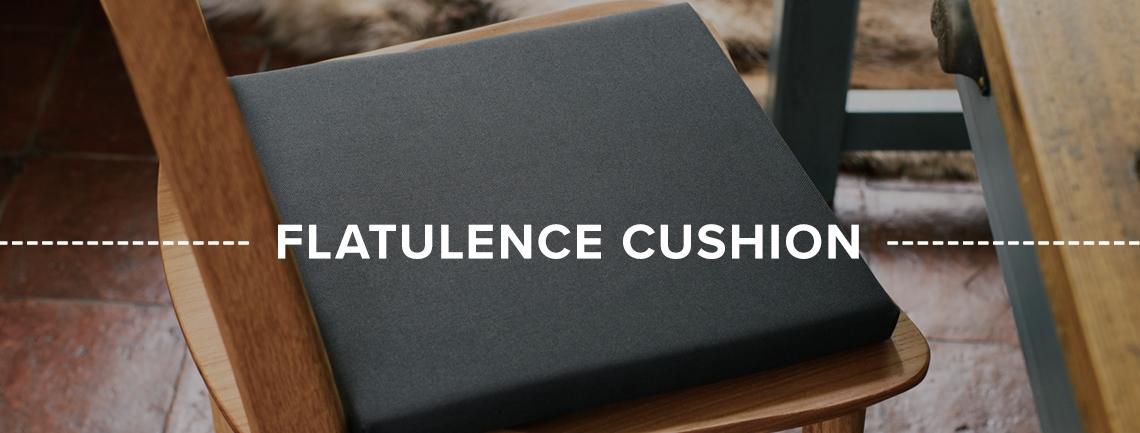 Homepage-Flatulence-Cushion-Banner1.jpg
