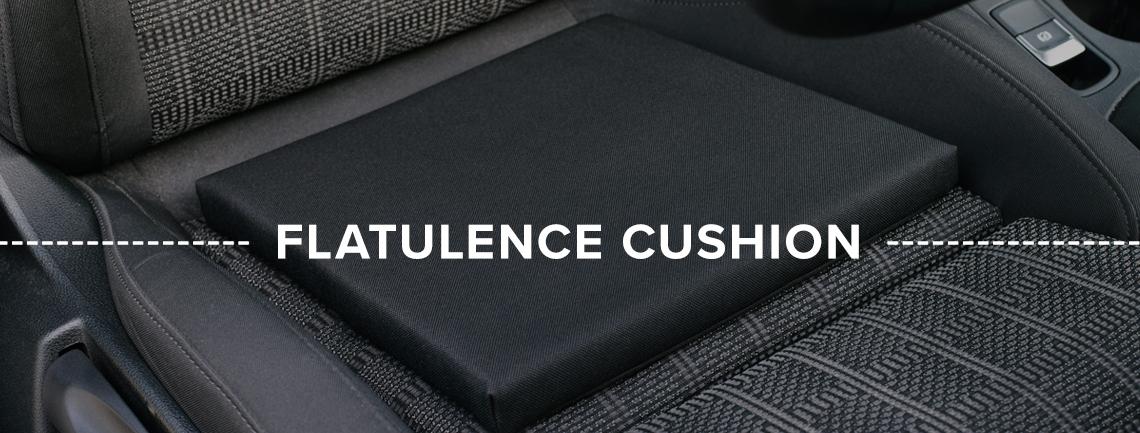 Homepage-Flatulence-Cushion-Banner3 (1).jpg