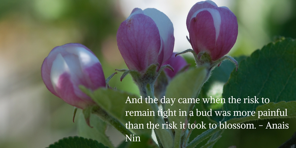 And the day came when the risk to remain tight in a bud was more painful