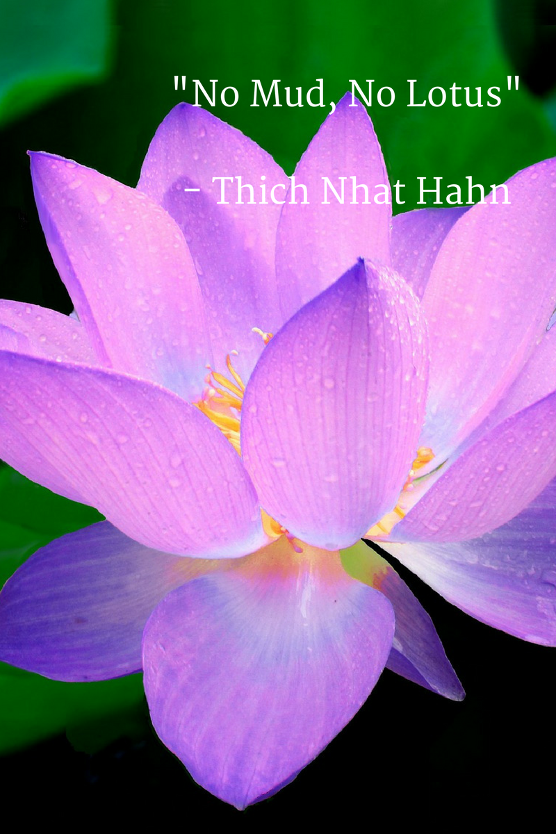 No Mud No Lotus Thich Nhat Hahn